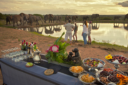 Camp Jabulani Elephant interaction Kapama Private Game Reserve Big 5 Greater Kruger Park South Africa