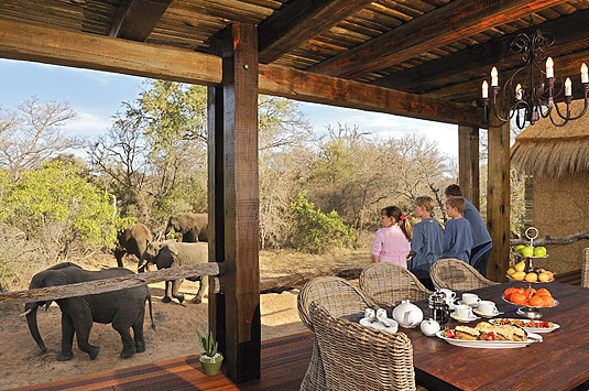 Private Zindoga Villa Deck Elephants Camp Jabulani Big 5 Kapama Private Game Reserve Greater Kruger South Africa