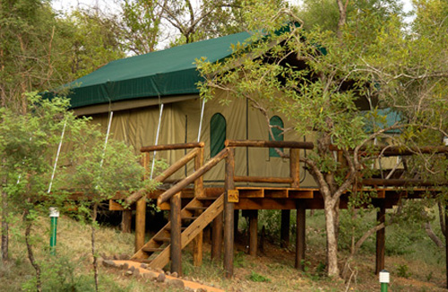 karongwe game reserve