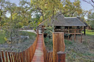 Bridge to hide at Lukimbi