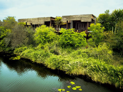 Singita Sweni Lodge Singita Private Game Reserve Kruger Park - Singita-luxury-african-game-reserve