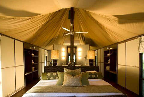 Ngala Tented Safari C& Timbavati Game Reserve - Kruger Park Reservations & Ngala Tented Safari Camp Timbavati Game Reserve - Kruger Park ...